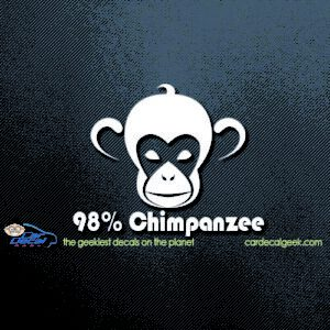 98% Chimpanzee Car Window Decal Sticker