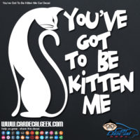 You've Got To Be Kitten Me Car Decal Sticker