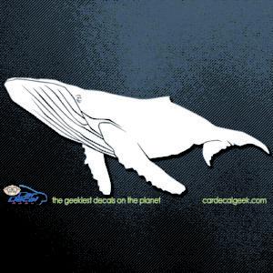 Humpback Whale Car Decal