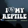 I Love My Reptile Car Decal