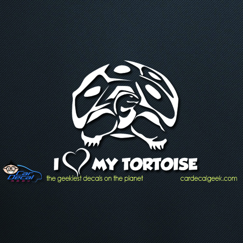 I Love My Tortoise Car Decal