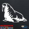 Walrus Decal Sticker