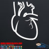 Human Heart Decal Sticker