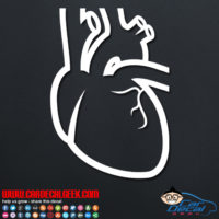 Human Heart Decal Sticker