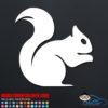 Squirrel Decal Sticker