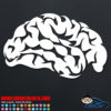 Human Brain Vinyl Decal Sticker