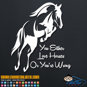 You Either Love Horses Or You're Wrong Decal Sticker