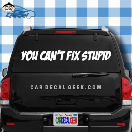 You cant fix stupid Car Window Decal Sticker