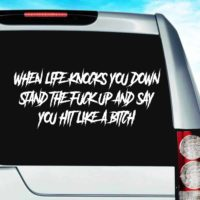 When Life Knocks You Down Stand The Fuck Up And Say You Hit Like A Bitch Vinyl Car Window Decal Sticker